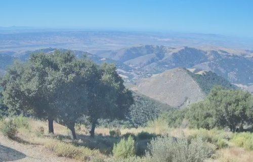 Tepusquet Peak Cam